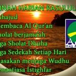 Sunnah Harian Rasulullah 150x150 Bekal Ibadah Umroh Haji